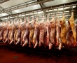 Halal, shechita and the politics of animal slaughter