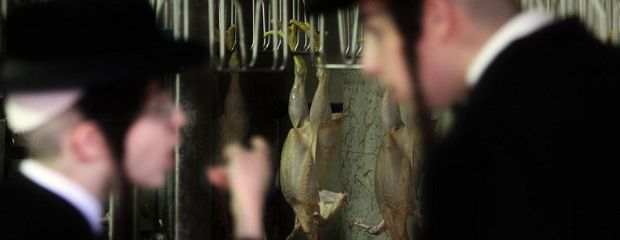 Religious slaughter of animals to produce halal and kosher meat should be banned
