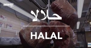 Debunking Halal Meat